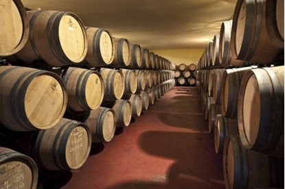 Bild von Bodega with capacity 450,000 L., Spain